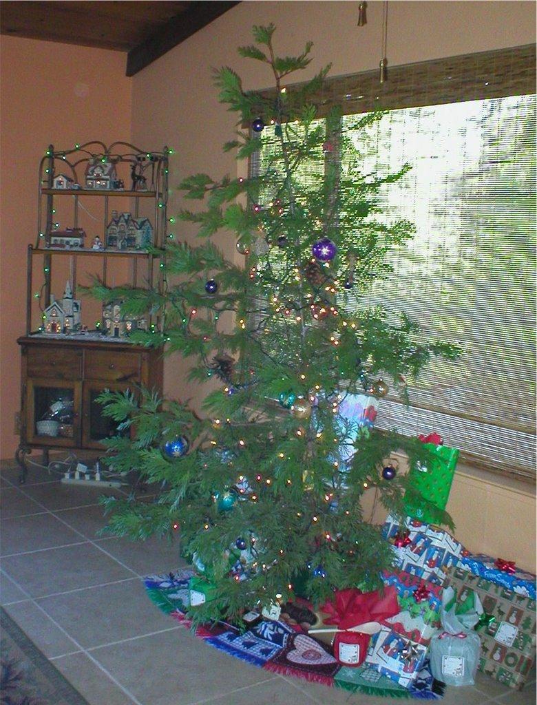 Sierra Vistas: A Charlie Brown Christmas Tree