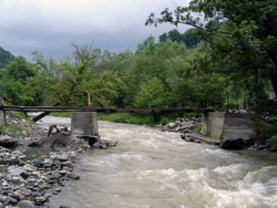 Podul în 2005