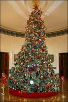 Official 2004 Christmas tree White House photo by Susan Sterner
