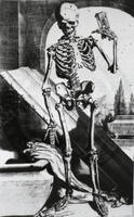 Anatomia humani corporis, Order Number A029213, Physical Desc. 1 print : engraving, Notes Old Negative no. 66-306 [Skeleton],