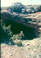 First discovered in the mid-1950s, Musk Ox Cave on BLM lands in New Mexico was still being surveyed and mapped several decades later. Cave explorers have found fascinating formations as well as numerous fossil vertebrates dating from the Late Pleistocene, some 1.5 million years ago. JIM GOODBAR, BLM