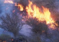 Grass fire in Eastern Washington, State: Washington By: Gary Wilson, Name: NRCSWA00039 Year: 2000, USDA Natural Resources Conservation Service.