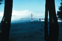 North side of the Golden Gate Bridge disappearing into the fog, Image ID: wea00155, Historic NWS Collection. NOAA.