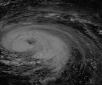 The National Climatic Data Center: Hurricane Fran - Satellite Image