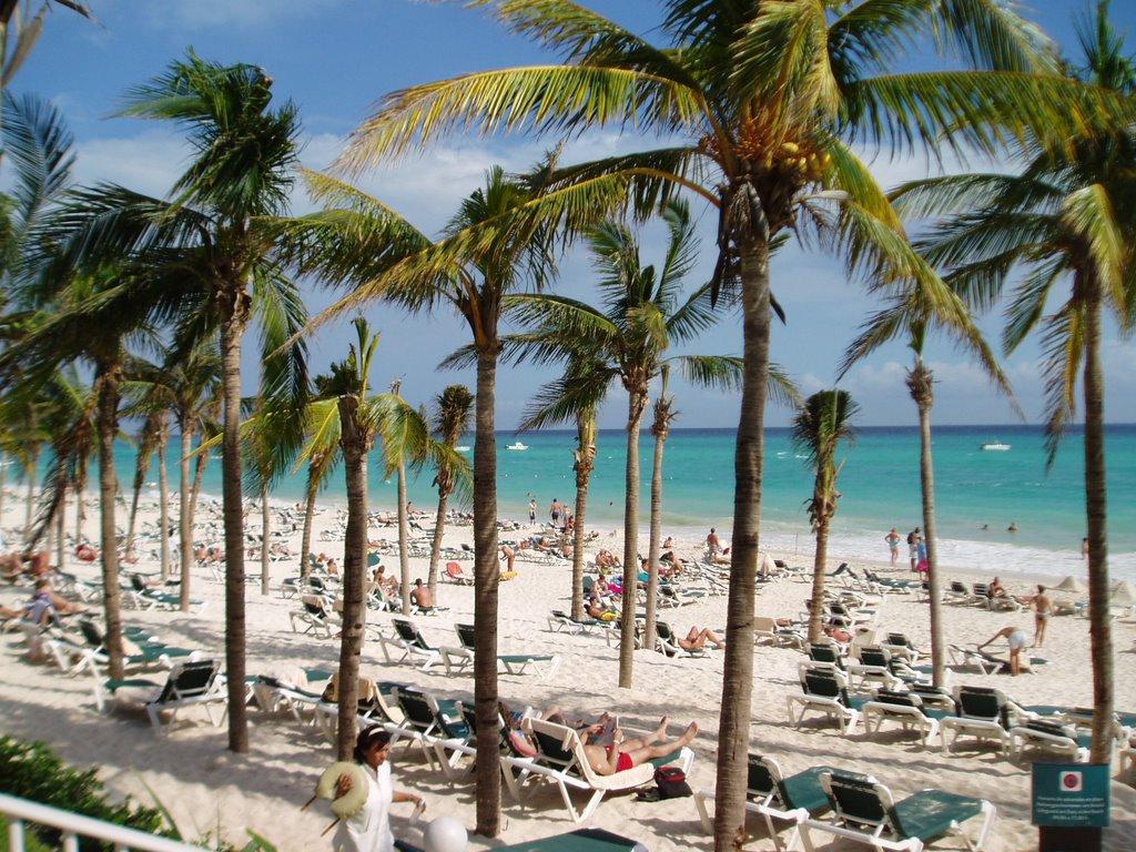 BlogOhotos: Review of the RIU Yucatan Resort Playa del