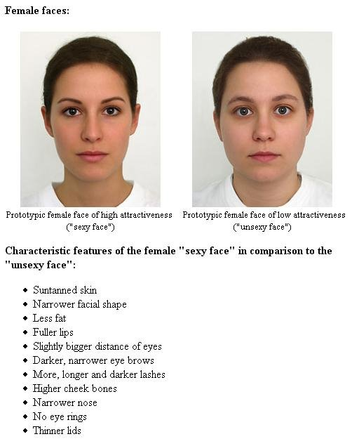 Commit attractive facial characteristics