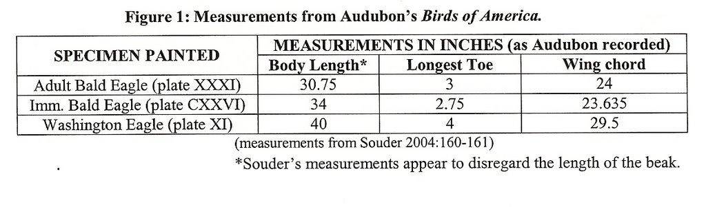 Biofort: Substantiating Audubon's Washington Eagle