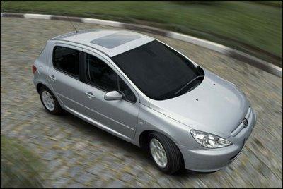 307_griffe Este ano teremos mais 2 flex: Peugeot 307 e Mitsubishi Pajero TR4