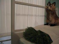 Bliu Blog February 2006