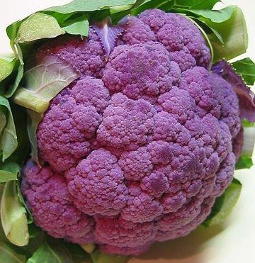 Cauliflower Butt 30
