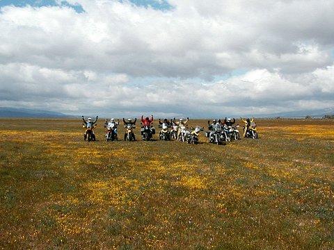RawHyde Adventure training California Poppy Preserve