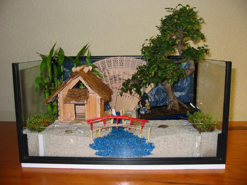Paludarium-creation: Projet(Fini)Mini paysage