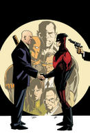 Nightwing #114