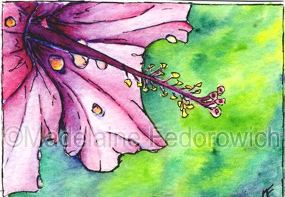 Pink Drops ACEO