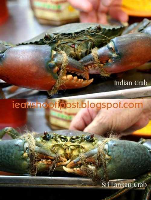 Indian Food Bayshore