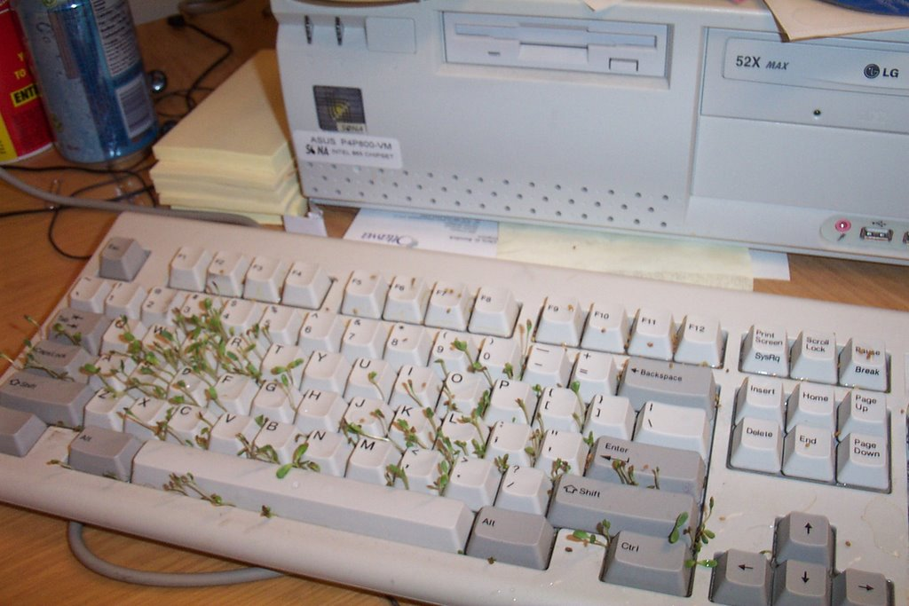 david scrimshaw s blog tips for tricksters the chia keyboard