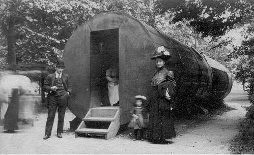 Here Is A Photo From Vfm4 On Flickr Showing A Tree Trunk Hollowed Out To  Make A House.