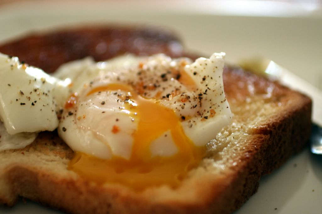 photograph picture simple poached egg on toast