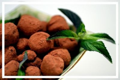 photograph picture recipe how to make dark sinful rich delicious chocolate mint truffles