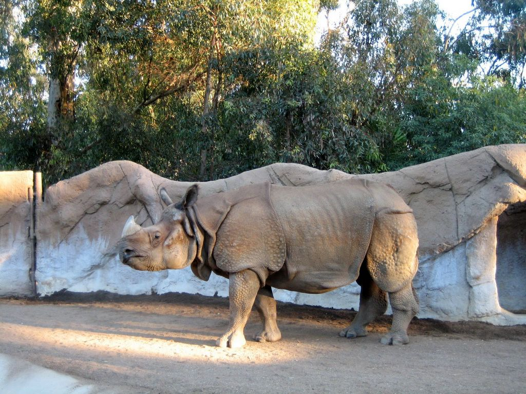 Hit The Road Travel Blog San Diego Zoo In Balboa Park