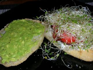 Yummy BLTs with avocado and alfalfa sprouts on focaccia