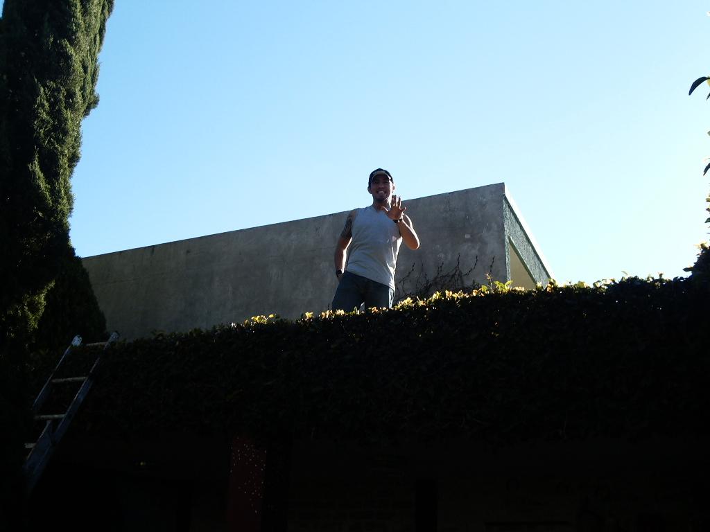 Mamada en el techo - 1 8