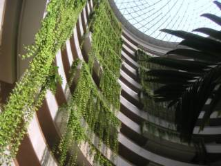 The inside atrium of the hotel, looking up towards the glass ceiling
