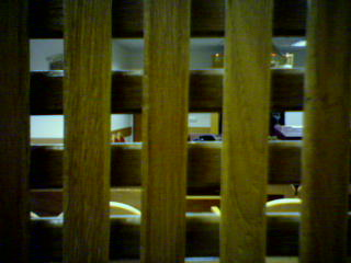 Hadassah Ein Kerem Hospital Synagogue: The view from inside the women's row