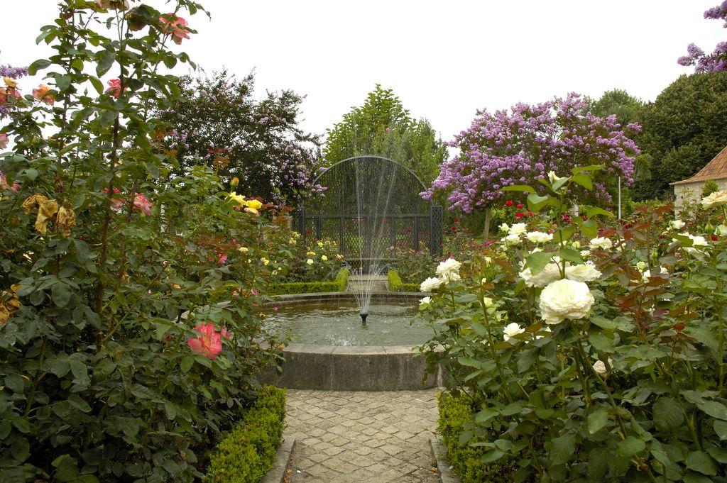 Dias com rvores jardins do lima for Esplanada dos jardins 1