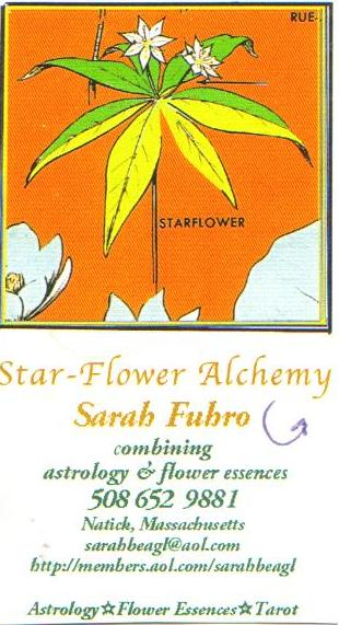 Sarah Fuhro Star Flower Alchemy: Rock Piles: One Very Large Rock Pile In Hamlen Woods