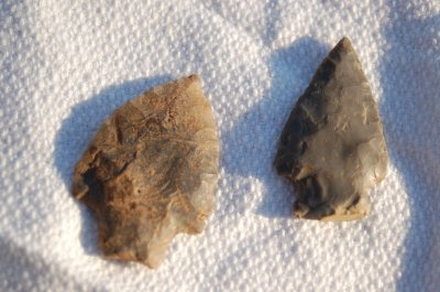 Projectile points from Droop Mountain and Caesar Mountain