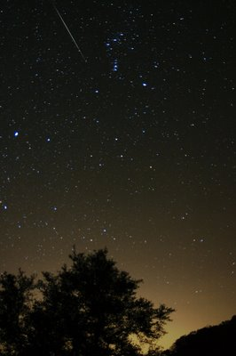 A Geminid meteor falling over the Bamberger Ranch. ©2006 Chris W. Johnson.