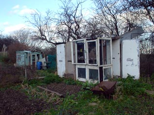 a Manor Green allotment