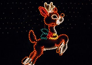 reindeer christmas lights