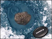 Meteorite fragments were recovered from the frozen Tagish Lake