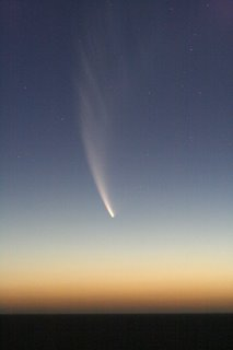 Comet McNaught, photographed by David Litchfield, from Perth WA on January 20