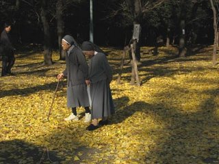 Catholic nuns in Yasukuni Shrine, Tokyo.