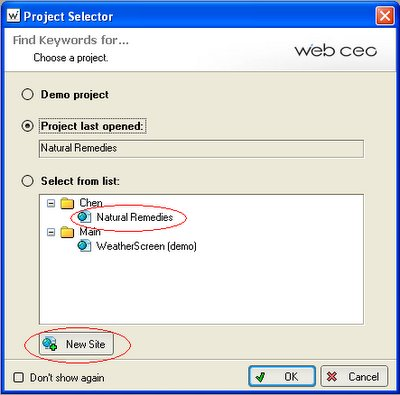 WebCEO Project GUI (graphic user interface)