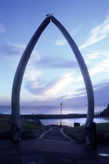 Whalebone Arch by Ian Britton