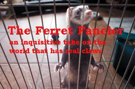 The ferret fancier