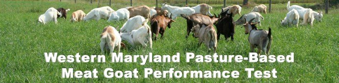 Western Maryland Pasture-Based Meat Goat Performance Test