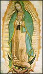 Our Lady of Guadalupe, Patroness of the Unborn