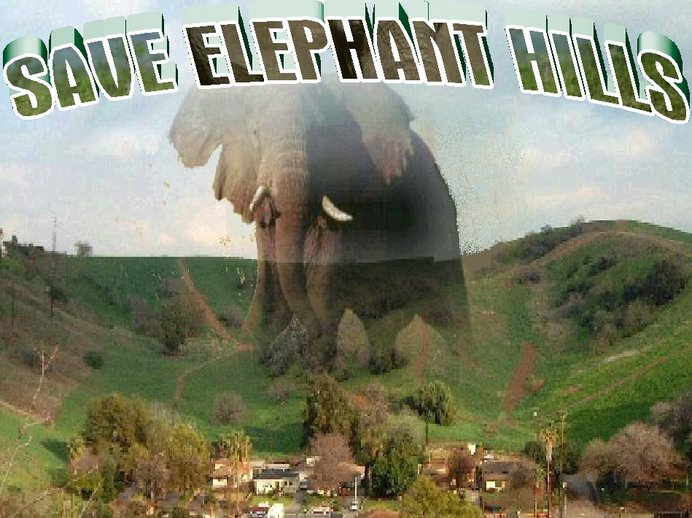 Save Elephant Hills Flyer